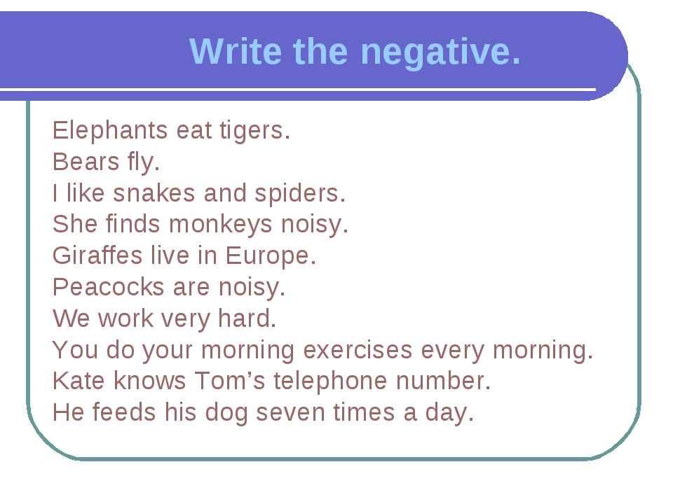 Write the negative. Elephants eat tigers. Bears fly. I like snakes and spider...