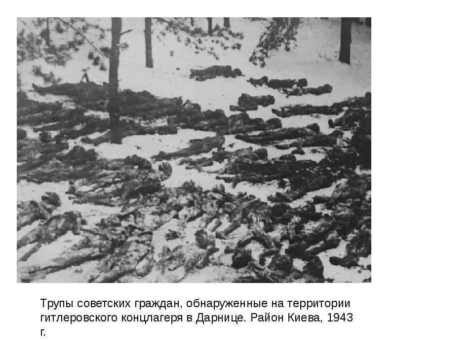 Трупы советских граждан, обнаруженные на территории гитлеровского концлагеря...