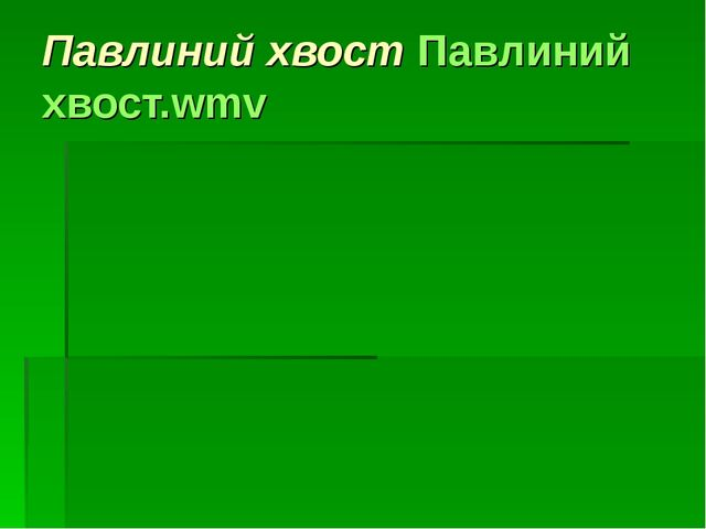 Павлиний хвост Павлиний хвост.wmv