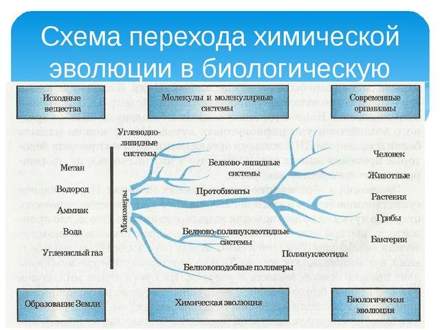 Схема перехода химической эволюции в биологическую