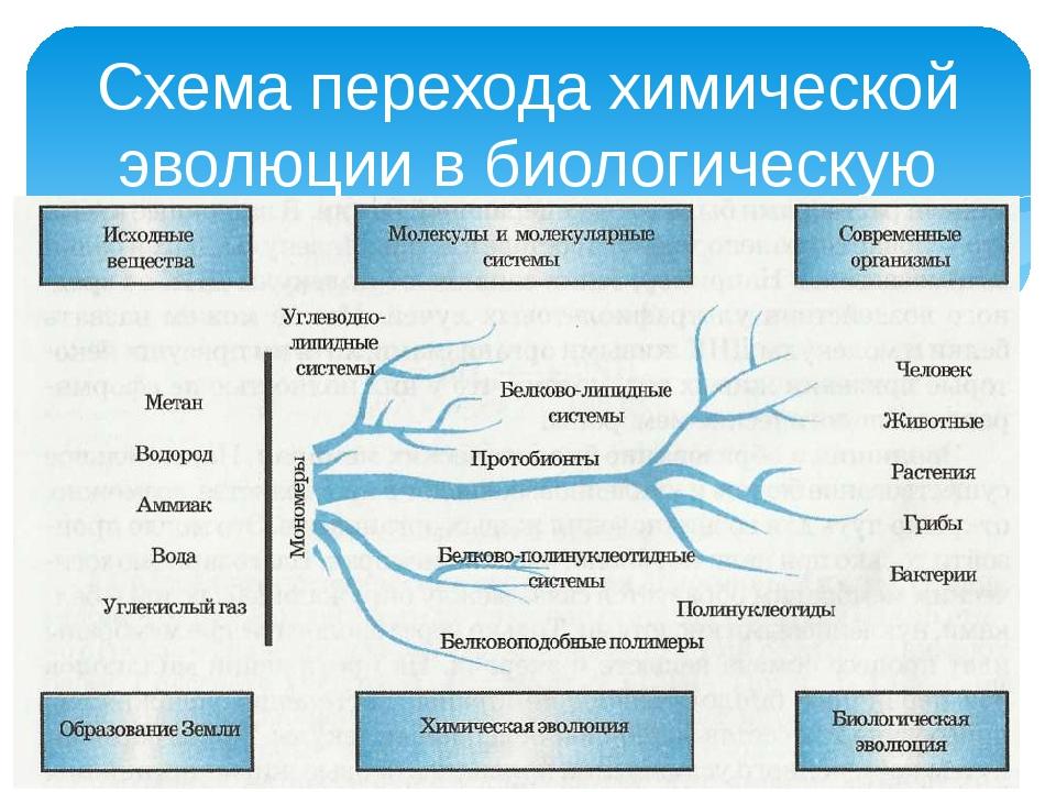 Инструкция о исторической работе