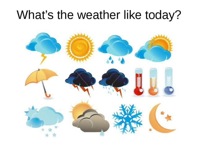 What's the weather like today?
