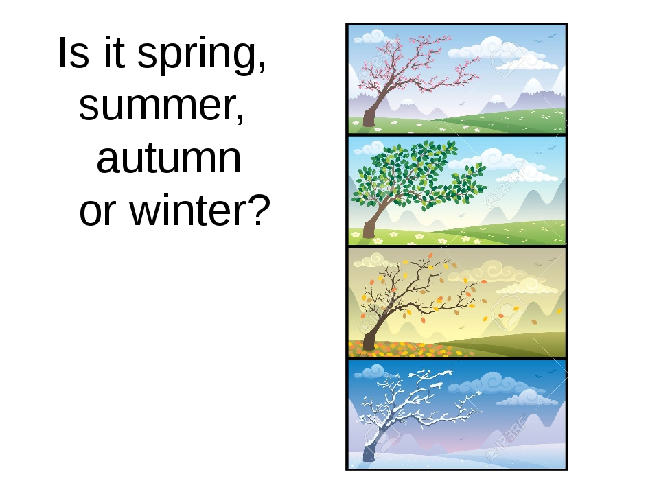Is it spring, summer, autumn or winter?