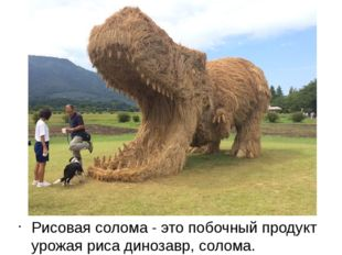 Рисовая солома - это побочный продукт урожая риса динозавр, солома.