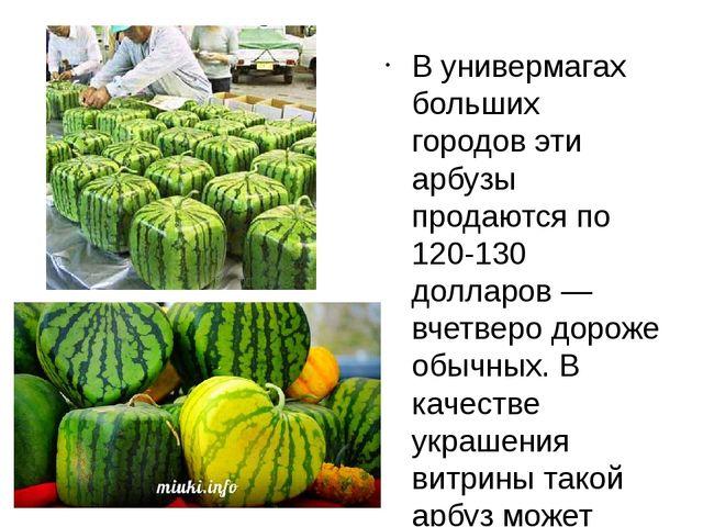 В универмагах больших городов эти арбузы продаются по 120-130 долларов — вчет...