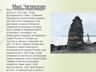 Мыс Челюскин Мыса Челюскин человек впервые достиг в 1742 году. Тогда экспедиц