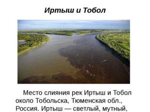 Иртыш и Тобол Место слияния рек Иртыш и Тобол около Тобольска, Тюменская обл.
