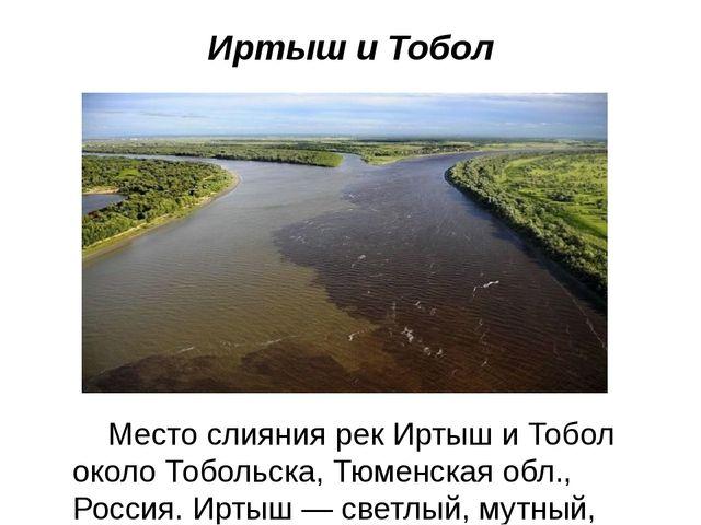 Иртыш и Тобол Место слияния рек Иртыш и Тобол около Тобольска, Тюменская обл....