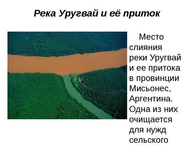 Река Уругвай и её приток Место слияния реки Уругвай и ее притока в провинции...