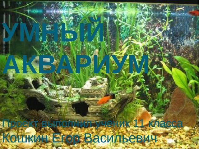 УМНЫЙ АКВАРИУМ Проект выполнил ученик 11 класса Кошкин Егор Васильевич