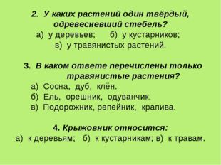 2. У каких растений один твёрдый, одревесневший стебель? а) у деревьев; б) у