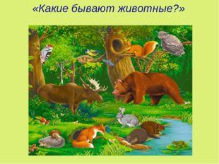 «Какие бывают животные?»