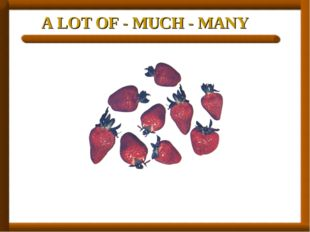 A LOT OF - MUCH - MANY