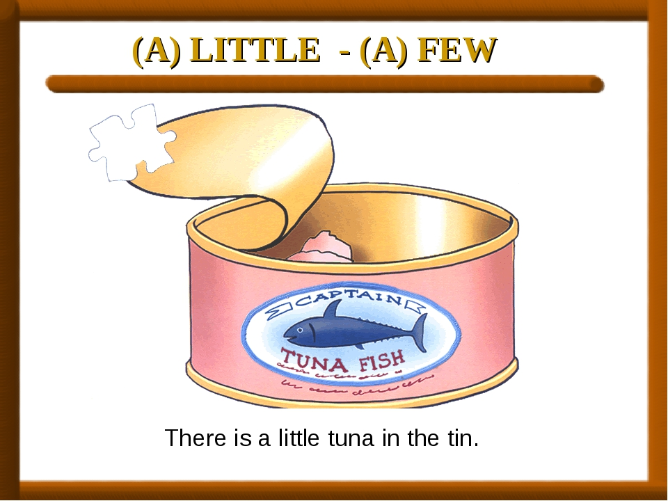 (A) LITTLE - (A) FEW There is a little tuna in the tin.