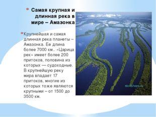 Самая крупная и длинная река в мире – Амазонка Крупнейшая и самая длинная рек