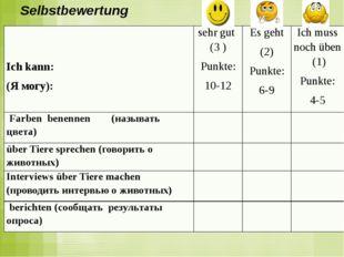 Selbstbewertung Ich kann: (Я могу): sehr gut(3 ) Punkte: 10-12 Es geht (2) Pu