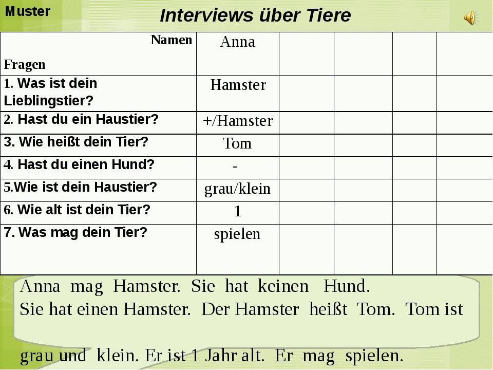 Interviews über Tiere Anna mag Hamster. Sie hat keinen Hund. Sie hat einen H...