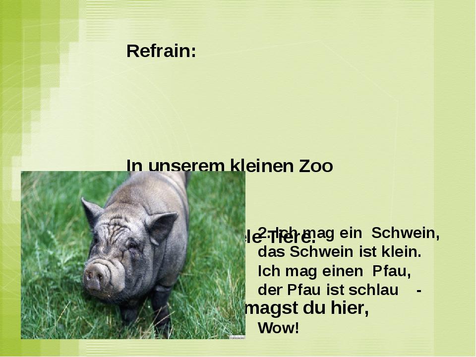 Refrain: In unserem kleinen Zoo Wir haben viele Tiere. Und wo was magst du hi...