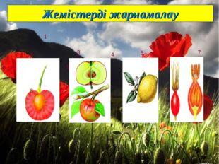 Жемістерді жарнамалау 4 5 6 7 8 9 10 11 12 13 1 2 3