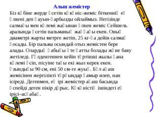 Алып жемістер Біз көбіне жерде өсетін көкөніс-жеміс біткеннің ең үлкені деп қ