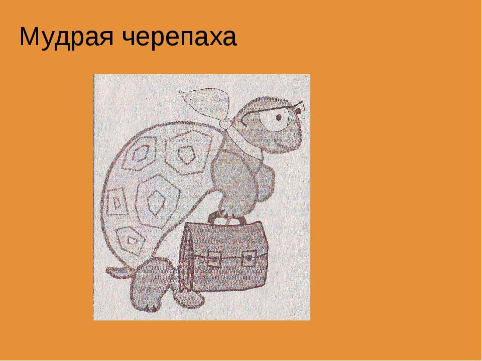 под черепаха и муравей из окружающего мира картинки раскраски собой аппликацию, выполненную