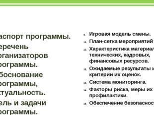 Структура профильной программы Паспорт программы. Перечень организаторов прог