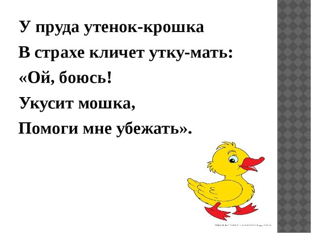 У пруда утенок-крошка В страхе кличет утку-мать: «Ой, боюсь! Укусит мошка, По...