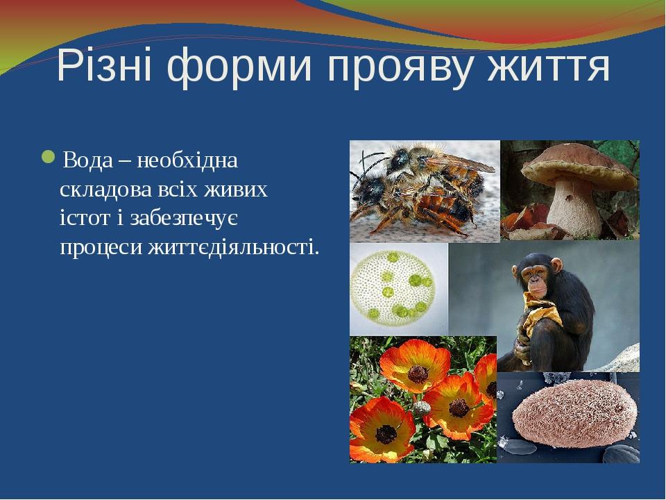 Різні форми прояву життя Вода – необхідна складова всіх живих істот і забезпе...