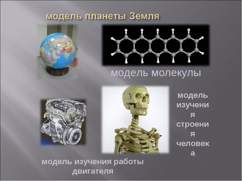 модель изучения работы двигателя модель молекулы модель изучения строения чел...