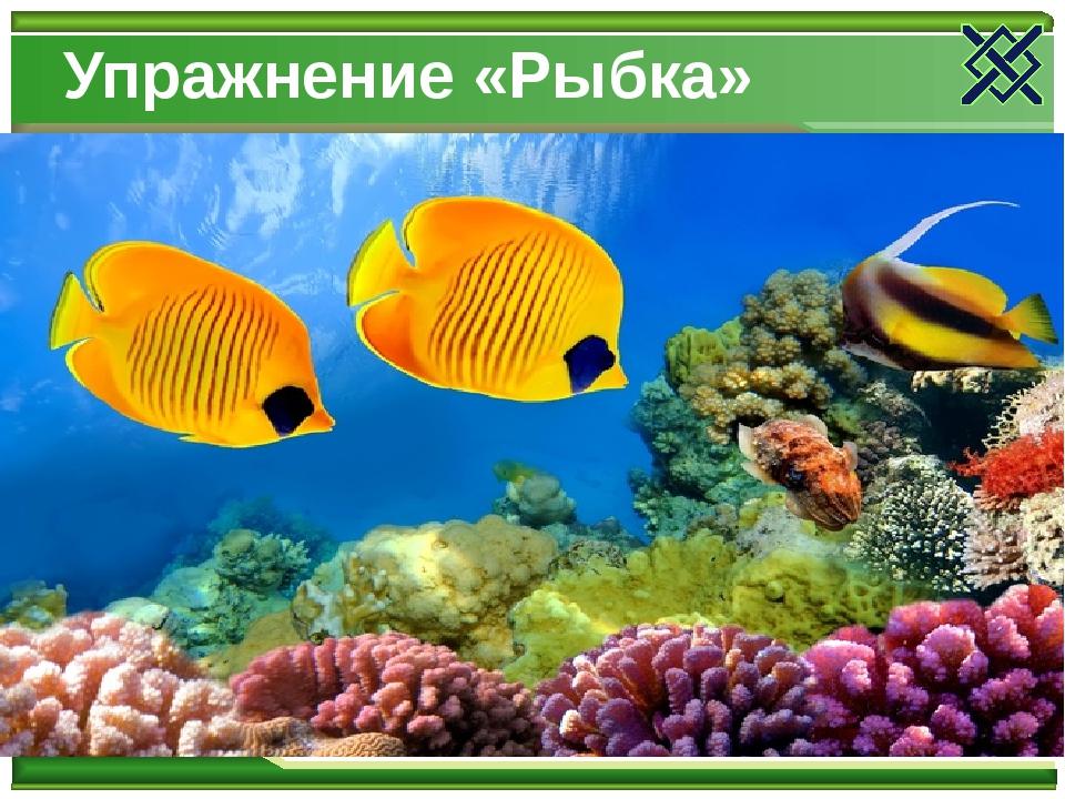 Упражнение «Рыбка»