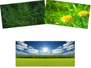 Хорошо лежать в траве зеленой И, впиваясь в призрачную гладь,