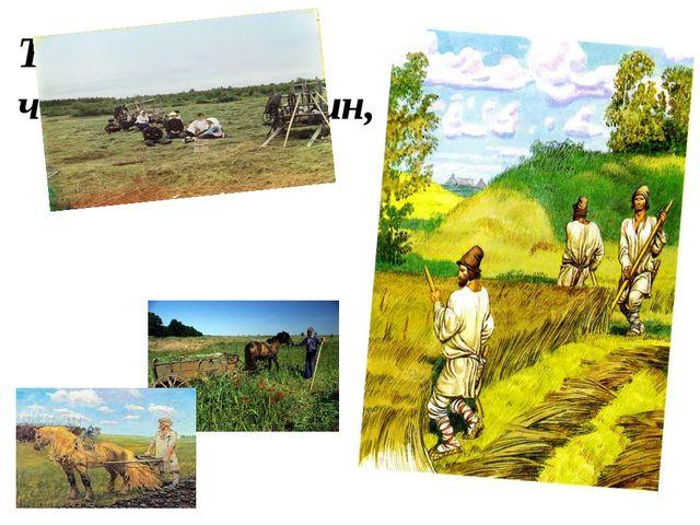Только я забыл, что я крестьянин,