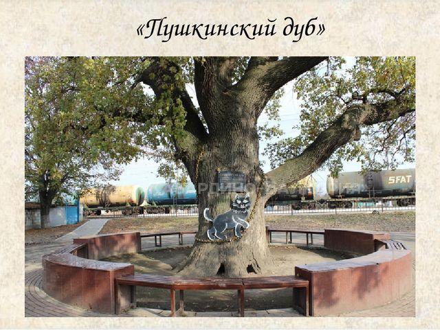 «Пушкинский дуб»