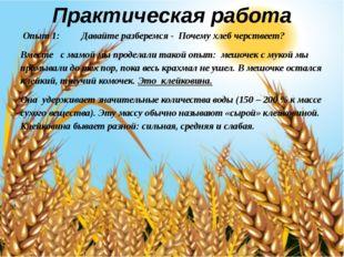 Практическая работа Опыт 1: Давайте разберемся - Почему хлеб черствеет? Вмест