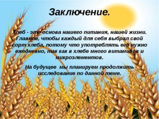 Заключение. Хлеб- это основа нашего питания, нашей жизни. Главное, чтобы каж
