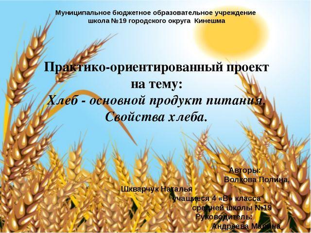 Муниципальное бюджетное образовательное учреждение школа №19 городского округ...