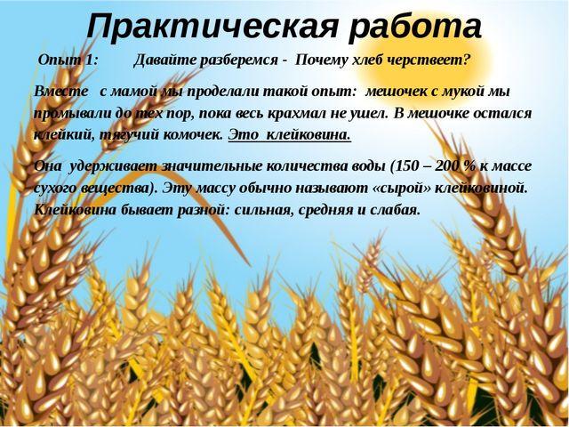 Практическая работа Опыт 1: Давайте разберемся - Почему хлеб черствеет? Вмест...
