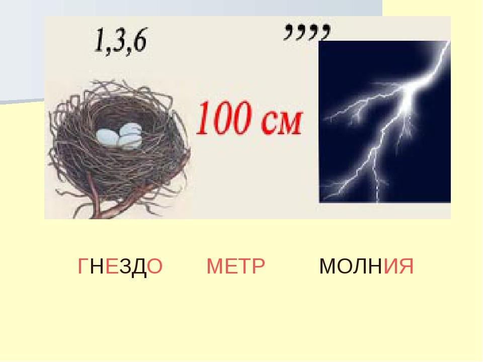 ГНЕЗДО МЕТР МОЛНИЯ