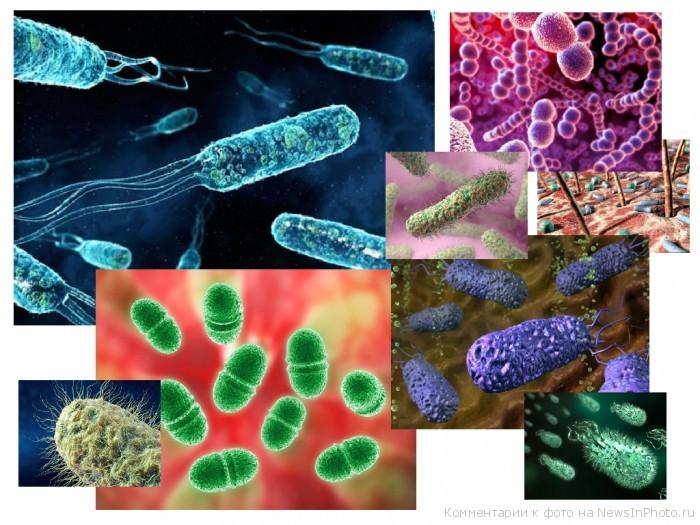 Микст-инфекции