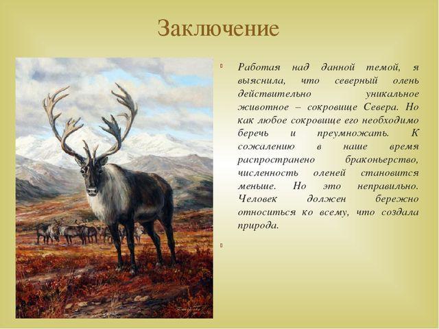 Заключение Работая над данной темой, я выяснила, что северный олень действите...