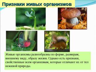 Признаки живых организмов Живые организмы разнообразны по форме, размерам, вн