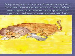 Вечером, когда лев лёг спать, собачка легла подле него и положила свою голову