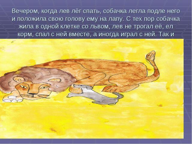 Вечером, когда лев лёг спать, собачка легла подле него и положила свою голову...
