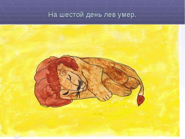На шестой день лев умер.