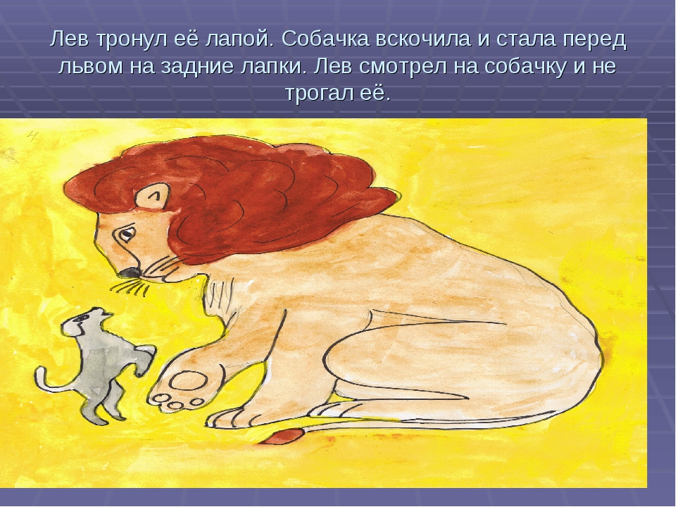 Лев тронул её лапой. Собачка вскочила и стала перед львом на задние лапки. Ле...