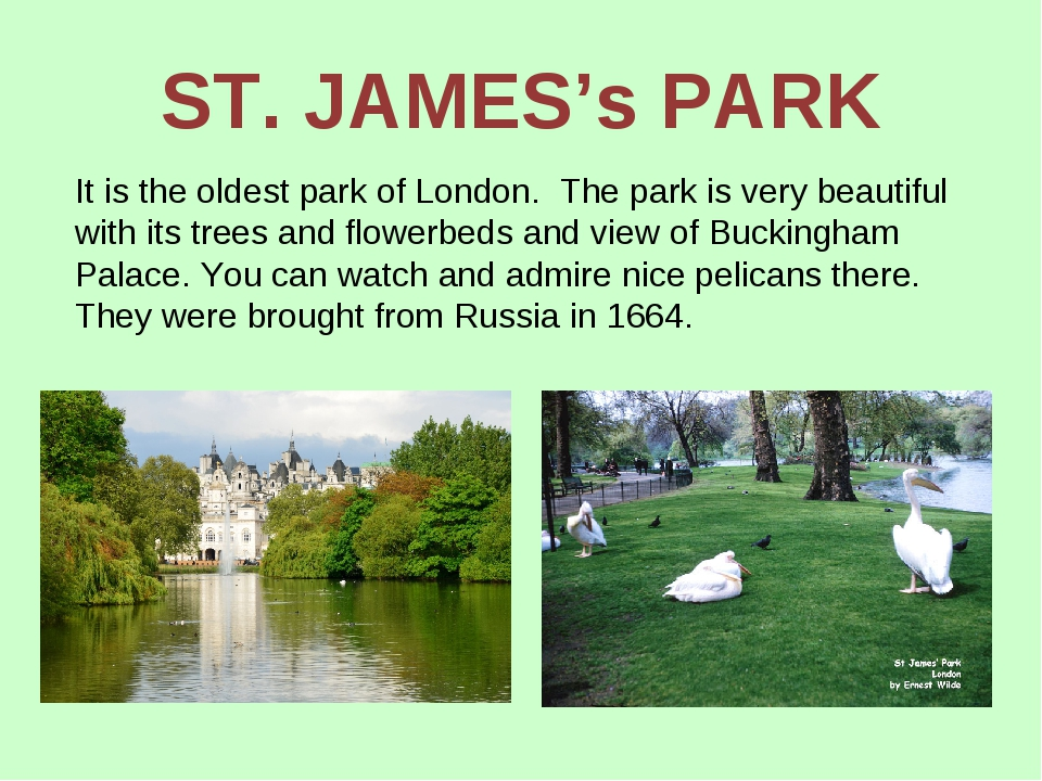 ST. JAMES's PARK It is the oldest park of London. The park is very beautiful...
