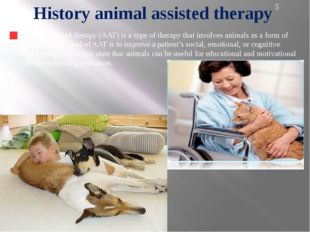 Hippotherapy is the first direction animaloterapiya, gained popularity in Rus