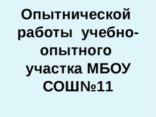 Дневник Опытнической работы учебно-опытного участка МБОУ СОШ№11 Руководитель