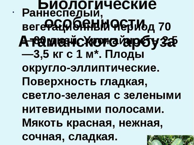 Проведение опыта  Биологические особенности Атаманского арбуза Раннеспелый,...