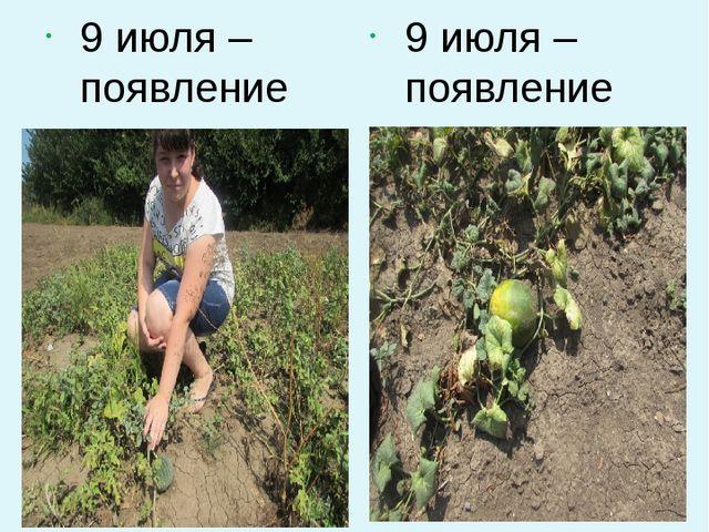 9 июля – появление плода арбуза 9 июля – появление плода дынь